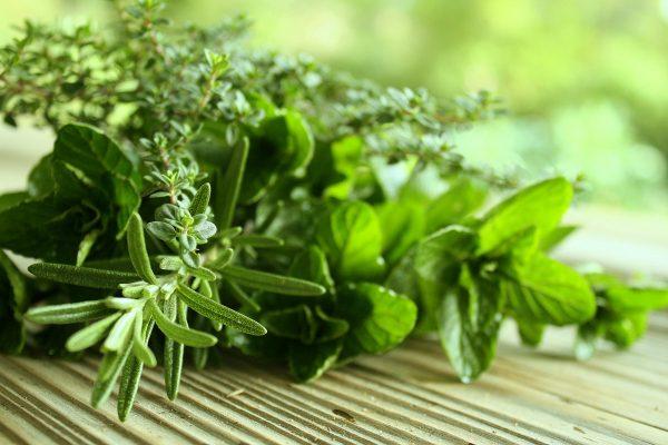 10 tervisliku ürti mida kodus kasvatada