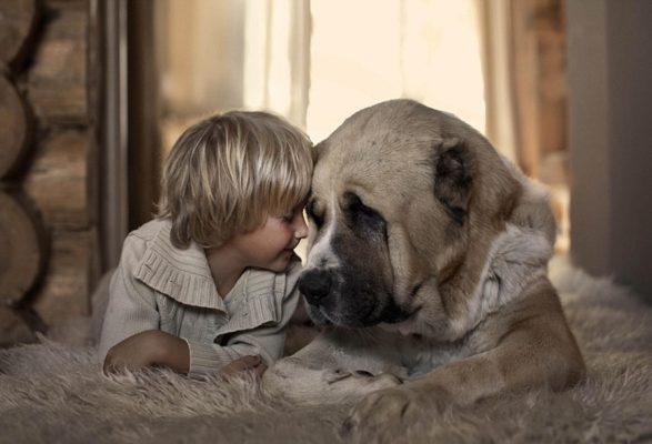 Kuidas valida lapse jaoks lemmiklooma?