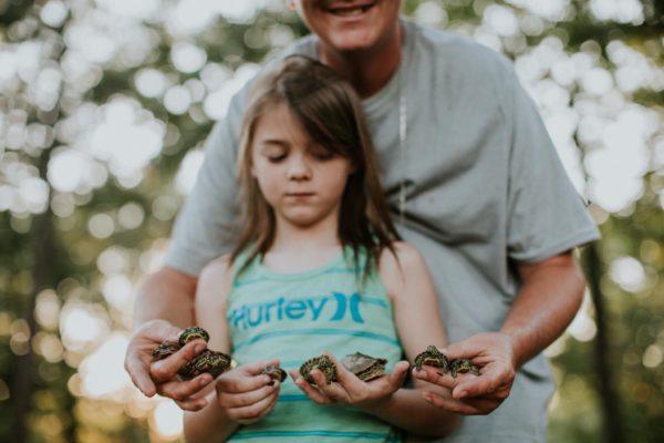 Kuidas kilpkonna eest hoolitseda?